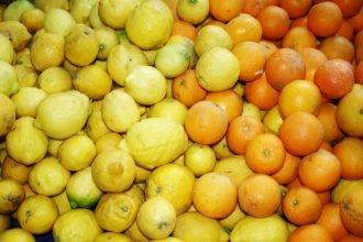 Bezoek de organische markt Feriköy Organik Pazarı tijdens je verblijf in Istanbul